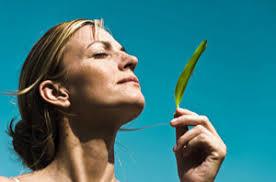 Профилактика заболеваний органов дыхания В современной медицине часто прим Дыхание через нос