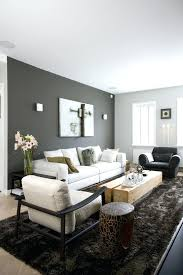 grey accent wall dark grey accent wall and light grey other walls neutral furniture gray accent grey accent wall