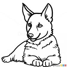 dogs drawings. Unique Drawings How To Draw Puppy German Shepherd Dogs And Puppies In Drawings D