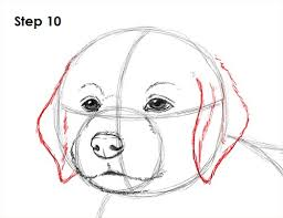 Small Picture How to Draw a Puppy