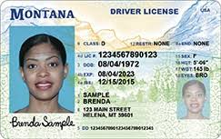 New Driver Montana Justice Out License - Of Rolls Department