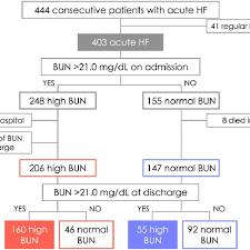 Bun Chart Patient Flow Chart Bun Blood Urea Nitrogen Hf Heart