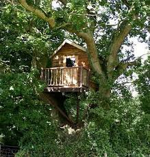 basic tree house pictures. Easy Treehouse Plans Basic Tree House Pictures O