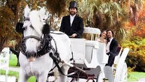 Looking for romance? Take a carriage ride with Moe