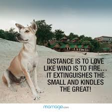 12 Best Long Distance Relationship Quotes Inspirational Long