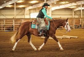 ⭐️Gunners Indian Rose & Ida Higgins⭐️... - John Irish Performance Horses    Facebook