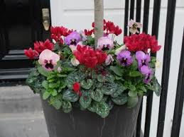 Small Picture 28 best Planters images on Pinterest Pots Gardening and Garden