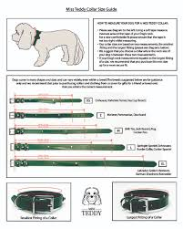 Collar Size Chart Dog Size Guide Miss Teddy Luxury Dog Collars Clothes More