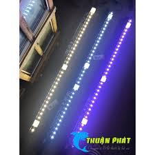 Đèn Led Aquanice Vàng Cho Cá Rồng 115cm - 85cm tại TP. Hồ Chí Minh
