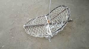 Bird Cage Trap Design How To Make A Bird Trap Homemade Bird Trap Bird Trap