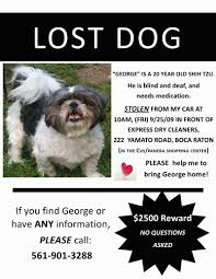 Lost Pet Flyer Maker Lost Dog Poster Template Free Download ms Word Youtube Pet Pics 53