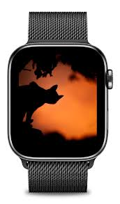 Halloween Apple Watch Wallpaper ...