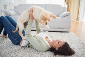 dog area rug designs