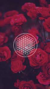 1082x1920 bring me the horizon flowers and wallpaper image 3840x2160