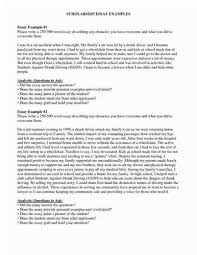 essays examples essays on about me org high school scholarship essay examples
