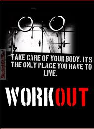 Gym Quotes Inspiration Gym Quotes No Pain No Gain StudentsChillOut