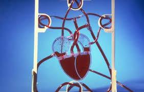 Заказать контрольную работу в Кирове Срочное решение контрольных  Химия Контрольные работы по химии