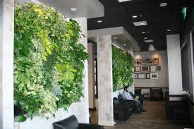 Peets Coffee Indoor Tropical Green Wall