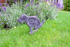 dog proof garden fencing the ultimate