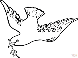 Small Picture Pigeon 4 coloring page Free Printable Coloring Pages