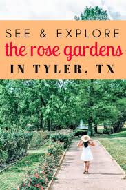this weekend harrison and i explored the beauty of the tyler rose garden in tyler tx as the nation s largest rose garden i had high expectations