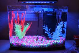 Fun Fish Tank Decorations Glow In The Dark Fish Tank Xander Ideas Pinterest Tanks