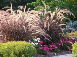 Small Picture Perennial Flower Garden Ideas Garden ideas and garden design
