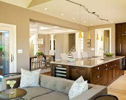 Interior Home Painting Remodelling