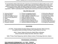 mcse resume samples mba resume examples from mcse resume samples mayotte occasions