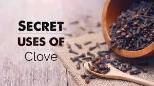 Secret uses of Clove | natural benefits | long ke fayde - YouTube