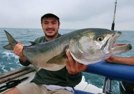 Pesca en Tarragona