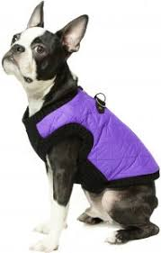 Gooby Size Chart Gooby Fashion Quilted Bomber Dog Vest With Stretchable Chest Violet X Large
