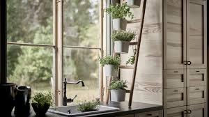 create an indoor herb garden tips to