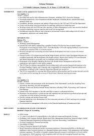 Cfo Sample Resume CFO Resume Samples Velvet Jobs 9