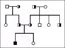 Albinism albinism is a condition in which there is a mutation in one of several possible genes, each of which Pedigree Analysis Biol110summertest Confluence