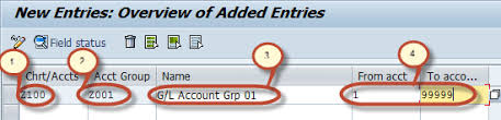 Create Chart Of Accounts In Sap How To Create Chart Of Accounts In Sap