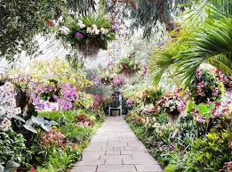 go inside the gorgeous orchid show at the new york botanical garden