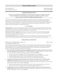 Executive Resume Examples  cover letter sales executive resume
