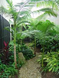 Small Picture Indoor and Outdoor Landscapes Design and Maintenance Contractor