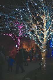 Birmingham Zoo Lights 2018 Winter Events In Birmingham Weber Mortgage