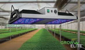grow elitetm grow lights