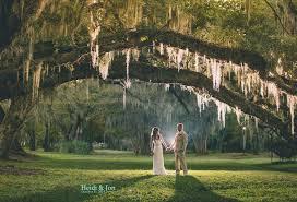 at magnolia plantation and gardens