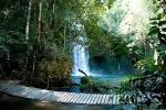 imagem de Costa Rica Mato Grosso do Sul n-19