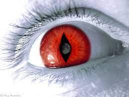 3d Red Eye free desktop wallpapers