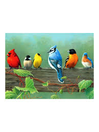 reeves painting by numbers rail birds