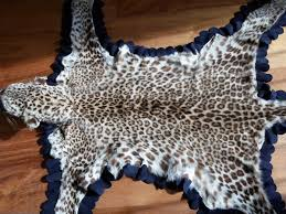 taxidermy mounted head young leopard skin rug