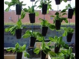 Small Picture Vertical Garden Design Ideas Vertical Garden Planters YouTube