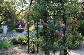 descanso gardens on twitter join us for descanso after hours from 5 to 8pm tonight get your tickets here s t co xolgaffj