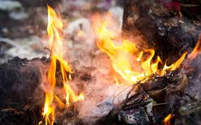 Whats Wrong With Burning Our Trash Anyway Conservation