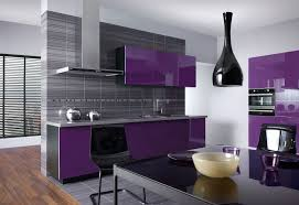 Chicago Il Kitchen Remodeling Fred Kitchen Remodeling Contractors Chicago Professional Kitchen